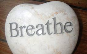 Breathing fresh air can lower pain in elderly home health care patients