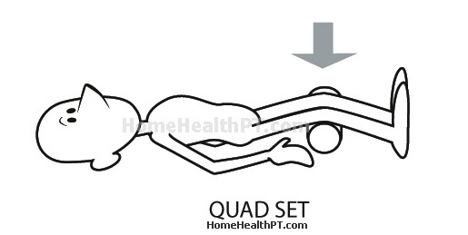 Best Leg Exercises Quad Sets